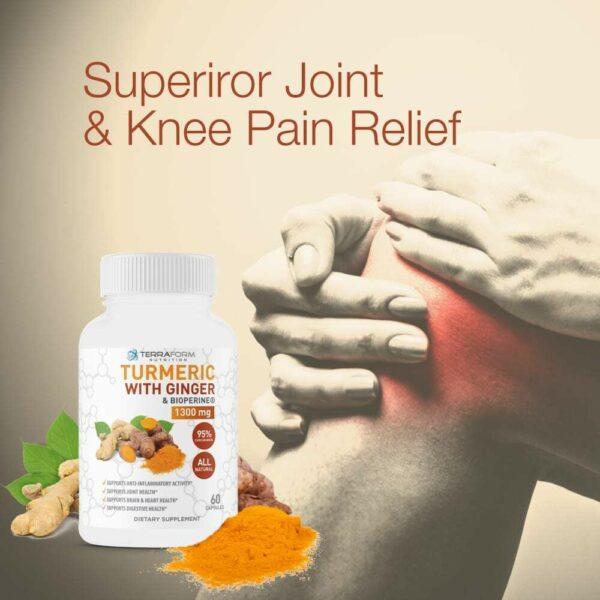Turmeric Curcumin with Ginger & BioPerine - 60 Capsules - TerraForm Nutrition-3270